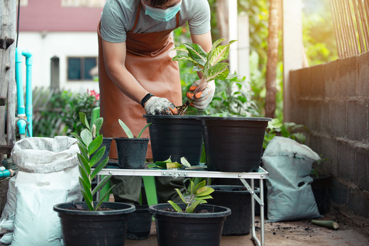 Midsection of man holding potted plant in yard