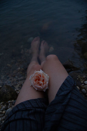 Low section of woman with flower at lake