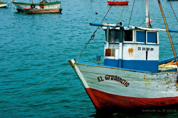 ShipSeaBarcoTaking Photos