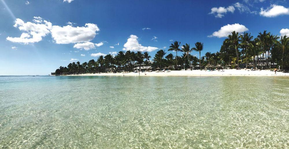 Beach View Mauritius - Flic en Flac Flic En Flac Sugar Beach Island Mauritius Sky Water Beauty In Nature Tranquility Scenics - Nature Beach Cloud - Sky Idyllic No People Palm Tree