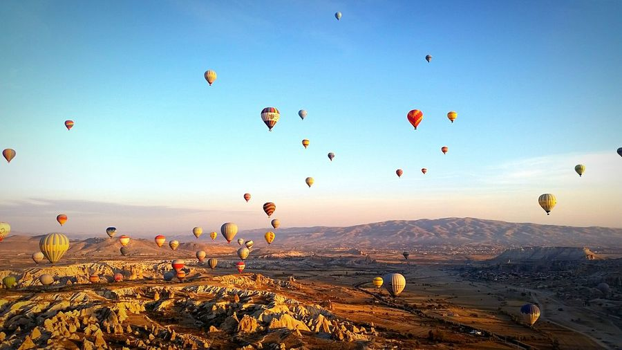 Hot air balloons over landscape against blue sky