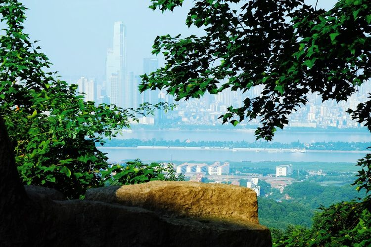 Tree Water Outdoors Scenics Building Exterior Beauty In Nature Changsha,China Landscape FUJIFILM X-T10 Travel China View Changsha, Hunan No People Travel Destinations City Life Modern High Angle View Cityscape Urban Skyline Skyscraper Architecture Fog Cloud - Sky Tree Growth