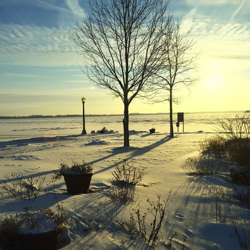 Snow ❄ Taking Photos Beach Winter From My Point Of View Lake View Snowpocalypse2015 Nature Clouds And Sky Hugging A Tree