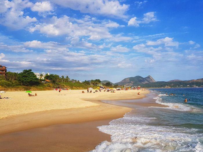Tree Sea Beach