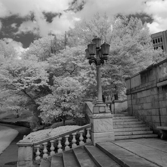 IMG_2413 by polishamericanphotographer on Flickr. Just follow this link to see and comment on this photo: https://flic.kr/p/sQQRi7 Cleaveland CLE  Cleveland ClevelandOhio1796 Ohio UniversityCircle WadeLagoon CuyahogaCounty EastSide Water Beautifulohio Blackandwhite Blacknwhite Infrared CanonG11 InfraredCanonG11 Canon TeamCanon Digitalcamera Digitalphotography Digitalphoto PointNShot PointandShot Powershot ThisisCLE