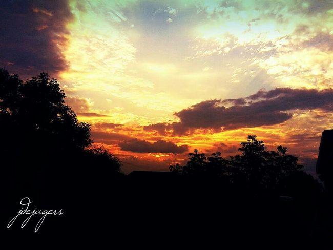 It's like fire in the sky. Orange Color Sunset Orange Sky Photography Beautiful Nature Dejagersphotography Julia De Jagers Sunset No People Tree Cloud - Sky Sky Nature Scenics