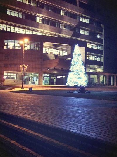 技術宅的浪漫>< Christmas Trees Night