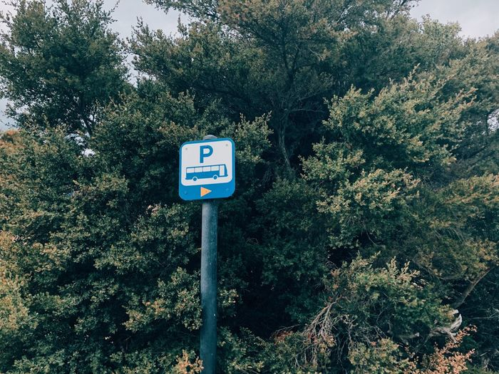 Plant Sign Tree Communication Growth Nature Guidance Day Road Sign Green Color No People Information Road Sunlight Low Angle View Outdoors Information Sign Arrow Symbol Pole Text The Still Life Photographer - 2018 EyeEm Awards