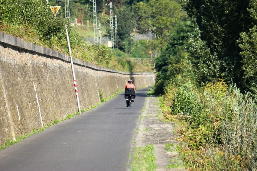 Bike Tour along the River Rhine Bike Tour Along The Rhine Bike Tour Rear View Of A Woman Bike Touring Day Direction Full Length Leisure Activity Lifestyles Men Motion Nature One Person Outdoors Plant Real People Rear View Ride Riding Road Sport The Way Forward Transportation Tree