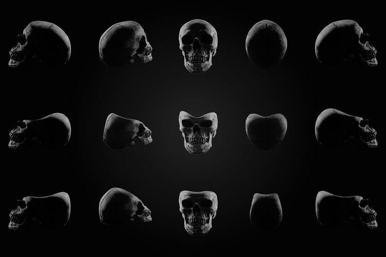 Anatomy Black Background Bone  Dark Dark Night Life Scary Set Of Skull Skeleton Skull Skull And Bones Still Life Still Life Photography