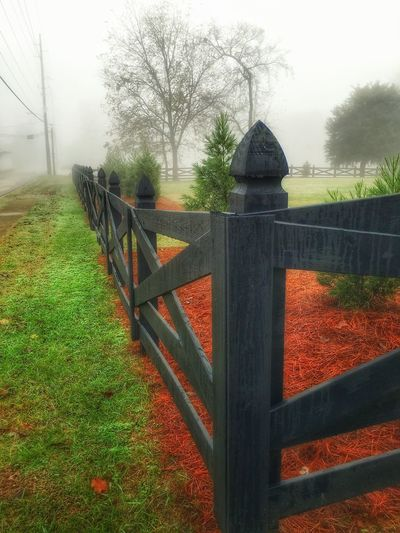 Fence on a Foggy Morning. Fence