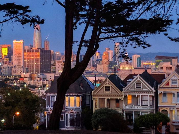 Edwardian Sanfranciscocalifornia Amazing View San Francisco CA🇺🇸 California Painted Ladies San Francisco Night San Francisco, California Architecture Building Exterior City Skyscraper Cityscape Built Structure Tree Urban Skyline Travel Destinations Illuminated City Life Modern Sky Business Finance And Industry Downtown District Outdoors Night No People California Dreamin