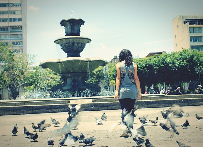 Fuentes Palomas Dove Mujer Woman Beautiful Day Fountain Plaza Original Experiences