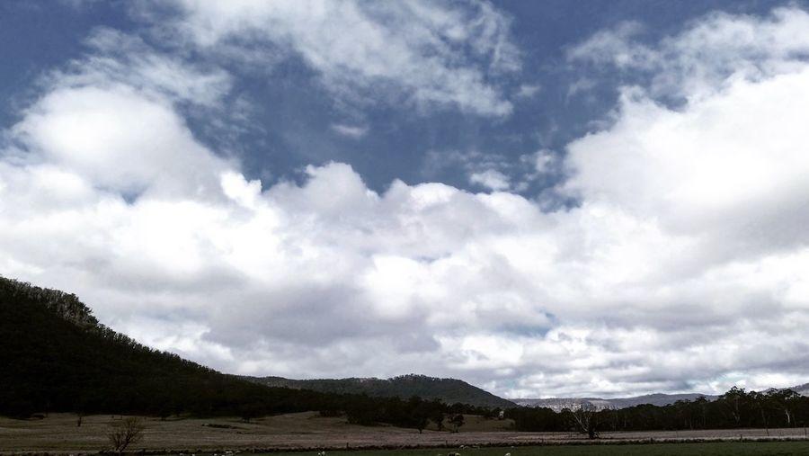 Nature Landscape DXO IPhone