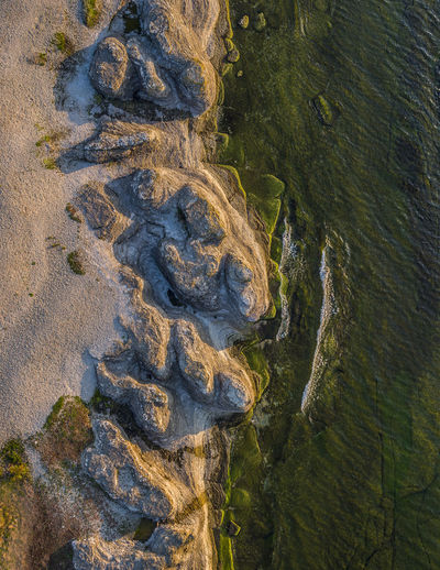 Lime stone cliffs at the edge of the Baltic Sea, northern part of the Swedish island Öland. Baltic Sea Byrums Raukar Aerial View Beauty In Nature Day Drone Photography Environment Full Frame Green Color Growth High Angle View Land Moss Nature No People Non-urban Scene Outdoors Plant Sea Sunset Tranquil Scene Tranquility Water Öland