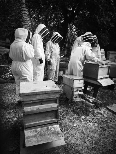 Beekeeping Beekeeper Hive Bees Honey Protective Suit London Parks Honeybees Colony Collapse Disorder Organic Food Apiary Apicultura The Week On EyeEm