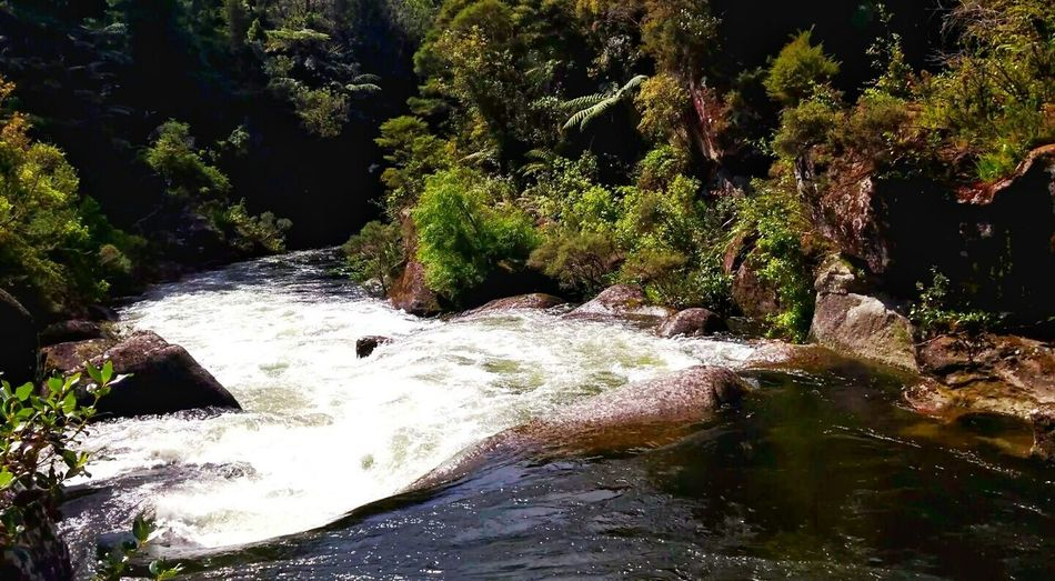 Ok😄👋👋so those of you who have been following my previous days shots will appreciate this one too(or videos on INSTAGRAM) kia ora😃👋my friends this gorgeous river is excellent for river rafting and Kayaking .An amazing Adrenaline Junkie buzz😄💦 26 days in a year, there is a dam release, further down the line they have to turn off the hydroelectric power station for this! thrillseeker will find powerful rapids with confused and broken water large drops violent and fast currents , abrupt turns, powerful stoppers and fast boiling eddies , with numerous obstacles in the main current. complex precise and powerful sequential manoeuvring is required. A definate risk to personal safety exists! This shot was taken only metres to the left of where the people in the previous photo stood!. Obviously you dont swim past where they are. And even then only the stronger swimmers jump from those rocks!! But crossing that grade5river..in a somewhat safer section was well worth the views ..as youll see over the coming days. ow yea ..i should probaly mention this is a Nzflora Kia Ora😃👋my Friends River River Rafting Kayaking Adrenaline Junkie Thrillseeker Rapids Water Large Drops Violent Currents Abrupt Eddies Obstacles Complex Precise Grade5river Grade 5 River Protecting Where We Play Beauty In Nature The KIOMI Collection Wanderlust Landscape Seeing The Sights New Zealand