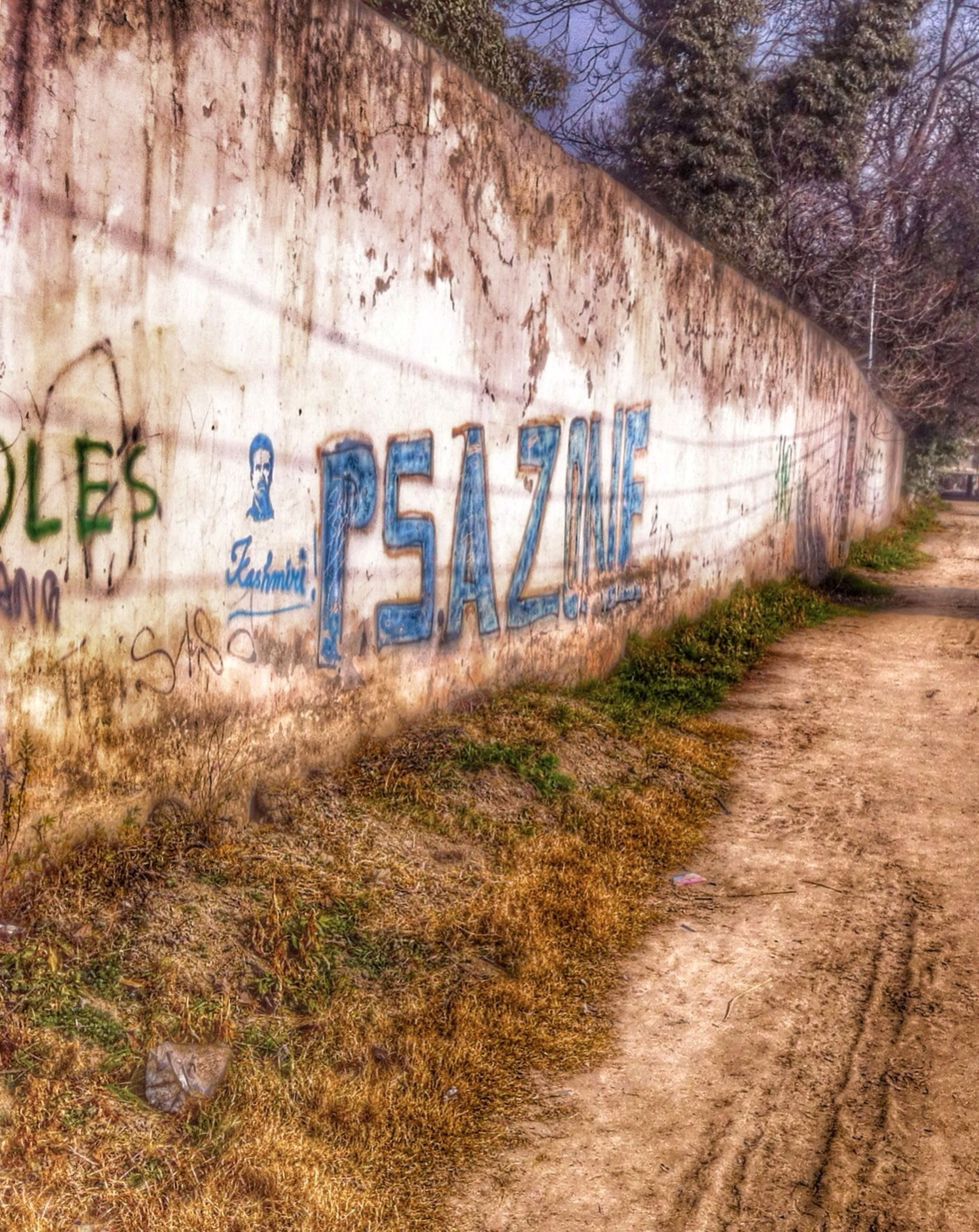 text, western script, communication, the way forward, information sign, graffiti, transportation, capital letter, road, sign, wall - building feature, day, no people, guidance, outdoors, information, non-western script, plant, diminishing perspective, grass