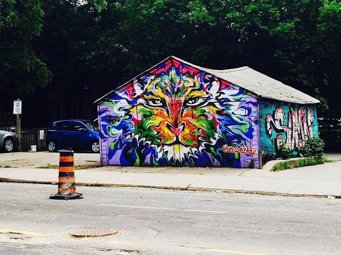 Fresh 3 Colourful Graffiti Streetphotography Streetart/graffiti EyeEm Best Shots Midtown Toronto