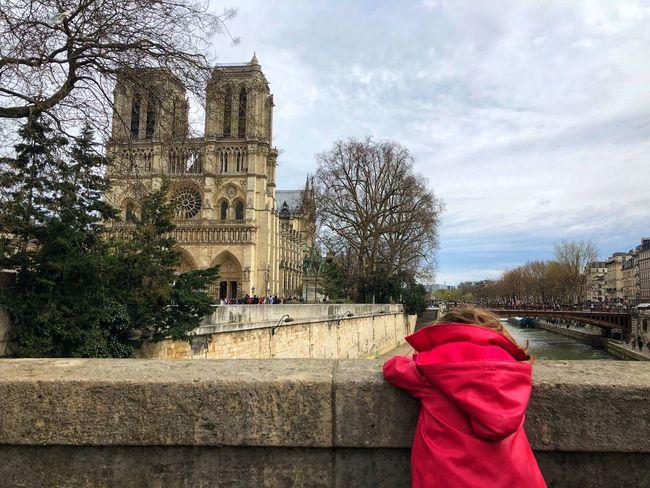 Cathedrale Notre Dame Paris France Children Kid Childhood Notre Dame De Paris Sky Architecture Plant Cloud - Sky Tree Built Structure Nature