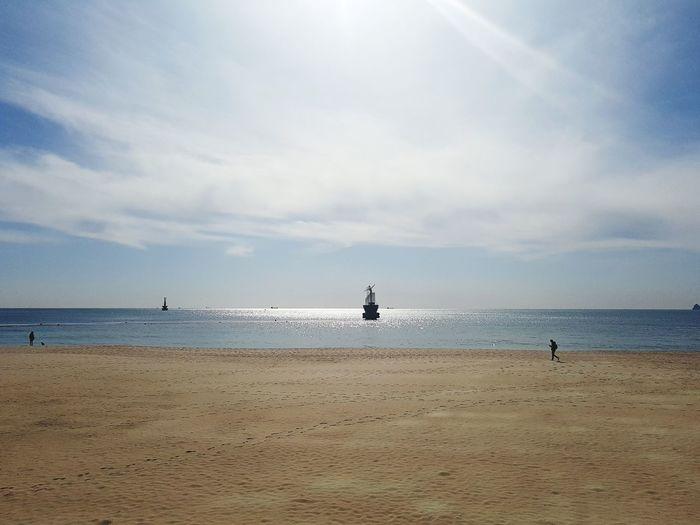 Winter Blue Haewoondae Sea Beach Full Length Dog Sand Wave Sky
