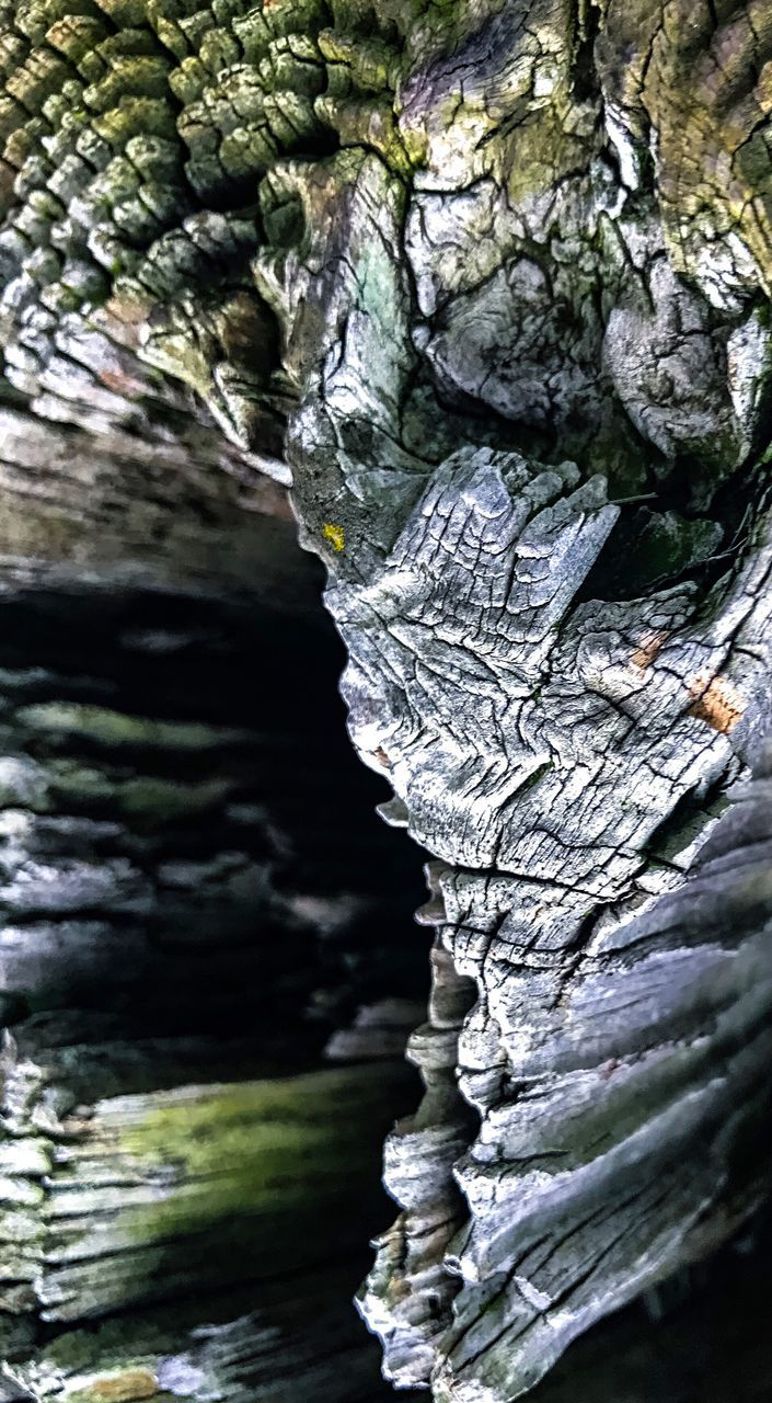 rock - object, textured, no people, nature, beauty in nature, day, cave, close-up, outdoors, water, tree