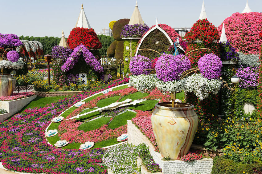 Amazing multicolored flower arrangement inside the miracle garden in dubai creating the feeling of a real fairy tale. Art And Craft Colors Dream Dubai Fairy Tale Gardening Miracle Garden Ornamental Art Blossom Creative Decoration Design Floral Flower Flowers Garden Idyllic Landscape Landscaping Multicolored Park Spring Summer Vibrant