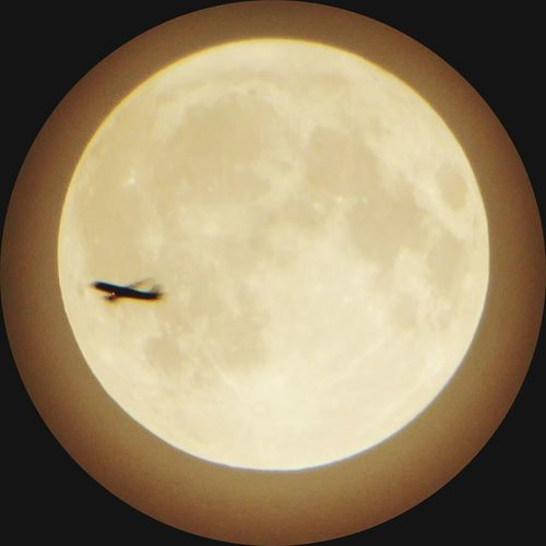 Fly Me To The Moon 💃💃💃💃 Flying Moon Cloud Tranquil Scene Enjoying The View Enjoy Life Last Days Of Summer Full Moon