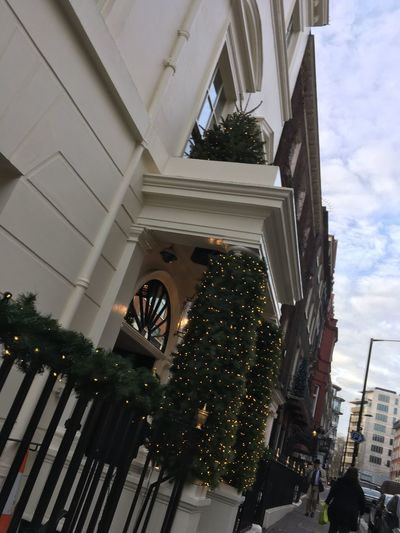 EyeEm Selects London Streetphotography Street Photography Street Christmas Architecture Built Structure Building Exterior Tree Low Angle View Sky Outdoors Christmas Decoration No People Day City
