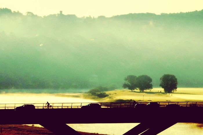 Bridge - Man Made Structure River Morning Light Fog Mist Valley Trees Golden Green Cultivated Land Bicycle Silhouette Shadows & Lights Lanscape Tree Rural Scene Water Silhouette Sky