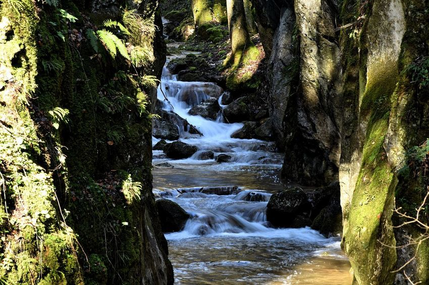 Nature Rock Clammy River Rock - Object Stones Wather Wildness