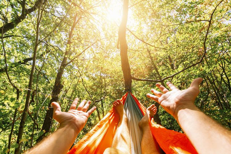 Cropped Image Of Man Relaxing On Hammock In Forest