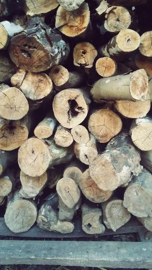 Log pile, with a gentle filter Logs Log Pile Wood Stack Organized Chaos Natural Simple Photography Simple Beauty