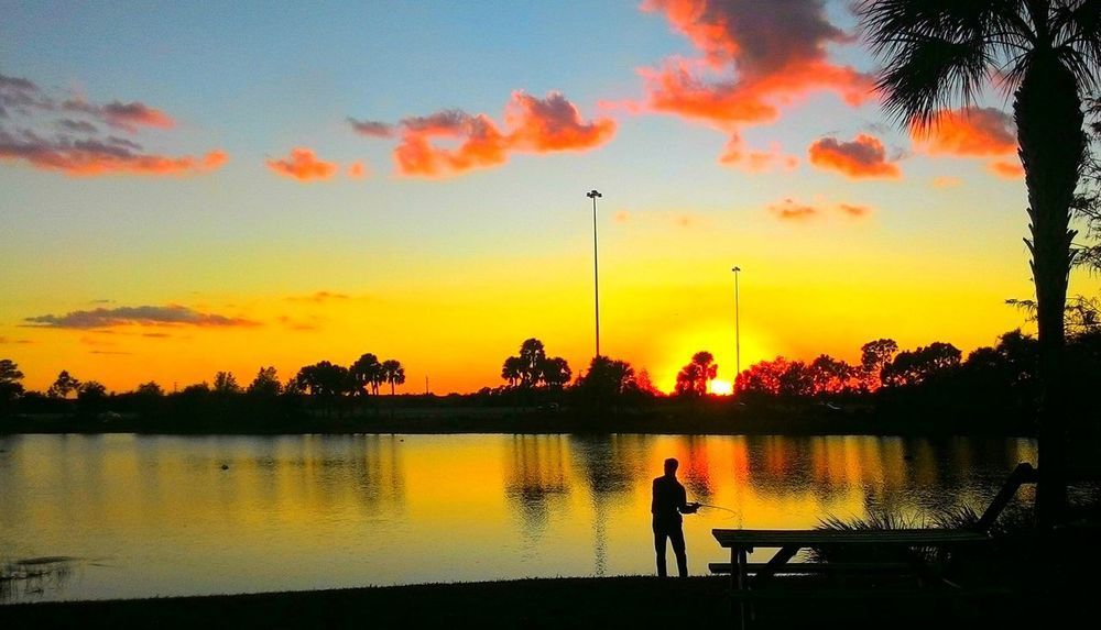 Sunset fishing. Sunset Silhouette Tree Reflection Orange Color Dramatic Sky Nature Sky Beauty In Nature Tranquil Scene Water Scenics Tranquility One Person Cloud - Sky Lake Leisure Activity People Adult One Man Only