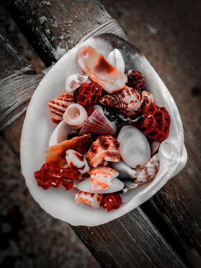Shells on a shell