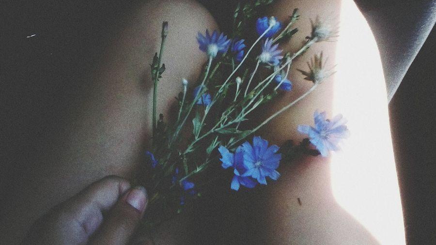 Flower Relaxing