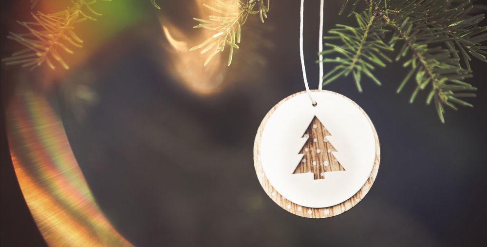Close-up of illuminated lighting equipment hanging on tree