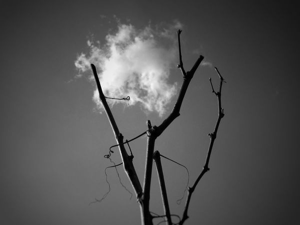Imprisoned Cloud Blackandwhite Monochrome Bnw EyeEm Best Shots Black & White Fine Art Photography Creativity Eyeemphotography EyeEm Nature Lover EyeEm Gallery EyeEm Selects Night