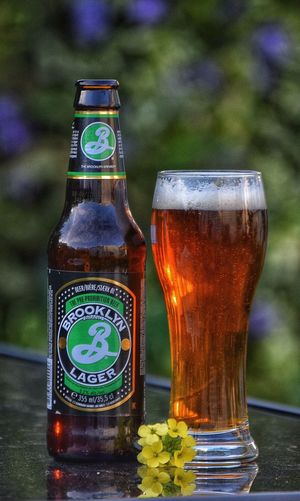 Taking Photos Photography Enjoying Life Weekends Happy Weekend !!! Brooklyn Brooklyn Lager Relaxing America