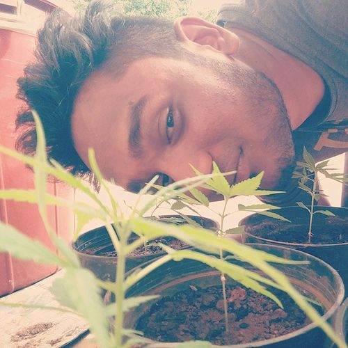 Those eyes will tell you when was this clicked these babies are so cute right now imagine when they'll grow😍😍😍 Hemp Marijane Mylove Takeatoke Cannabisculture Charasi Devinedope Herbhealsyoursoul Herbhealsyourheart Herbivore 😉