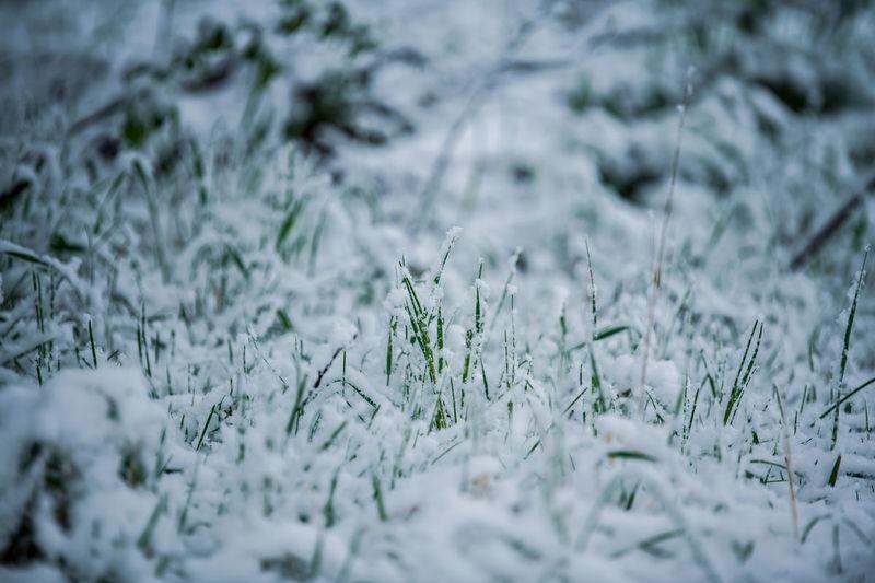 Full frame shot of snow on field