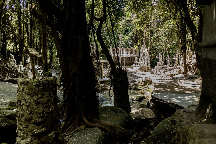 magic garden in the jungle of Koh Samui ASIA Beauty In Nature Built Structure Day Hidden Beauty Hidden Places Jungle Trekking Magic Garden Nature No People Outdoors Rain Forest River Rain Forest Trees Sculptures Tranquility Travel In Thailand Tree Water