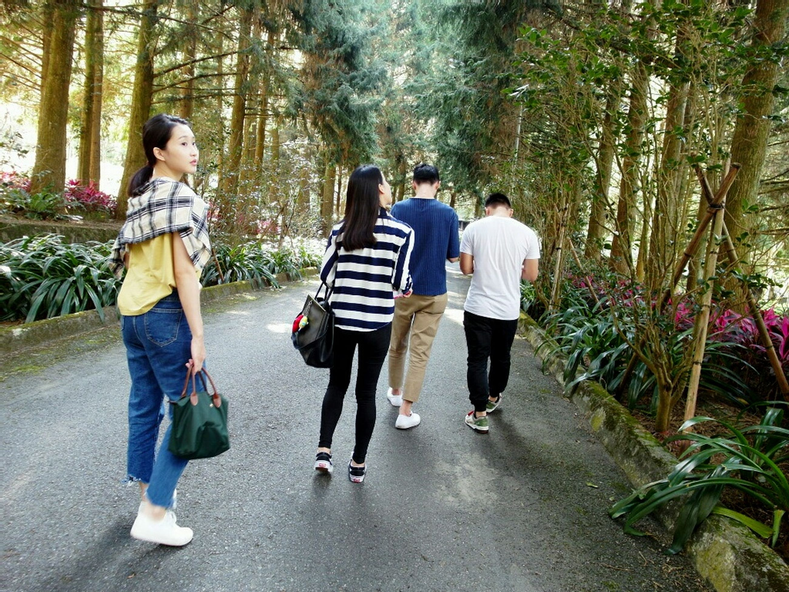 tree, full length, lifestyles, rear view, leisure activity, walking, casual clothing, togetherness, bonding, men, forest, person, love, boys, footpath, childhood, the way forward, park - man made space