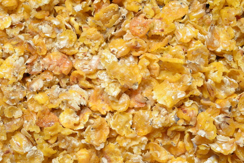 muesli for horses Backgrounds Breakfast Close-up Corn Food Food And Drink Full Frame Healthy Eating Heap No People Oats - Food Popcorn Raisin Rolled Oats Seed Snack Studio Shot Sweet Food Wellbeing Yellow