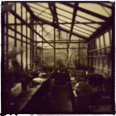 French Greenhouse