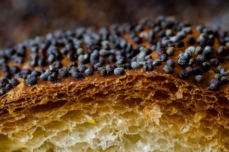 Close-up of bread with poppy seeds
