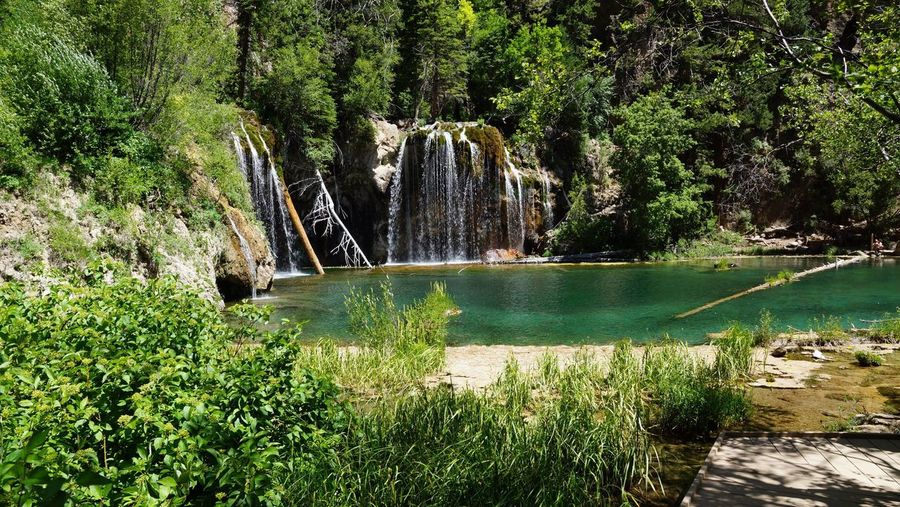 EyeEmNewHere Beauty In Nature Tree Waterfall Outdoors Nature Hanging Lake Hanging Lake Colorado No People