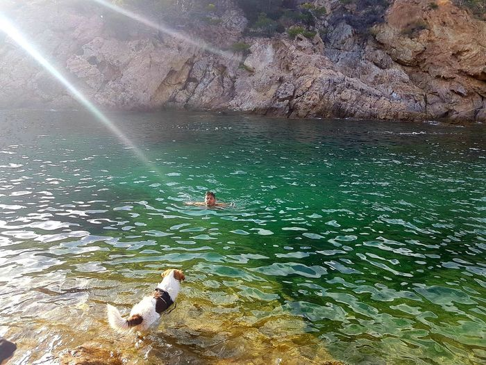 Al agua perruno. Water Nature Beauty In Nature Lifestyles Dog