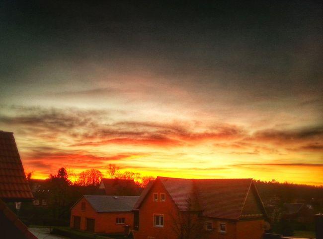 Sunrise Morning Glow