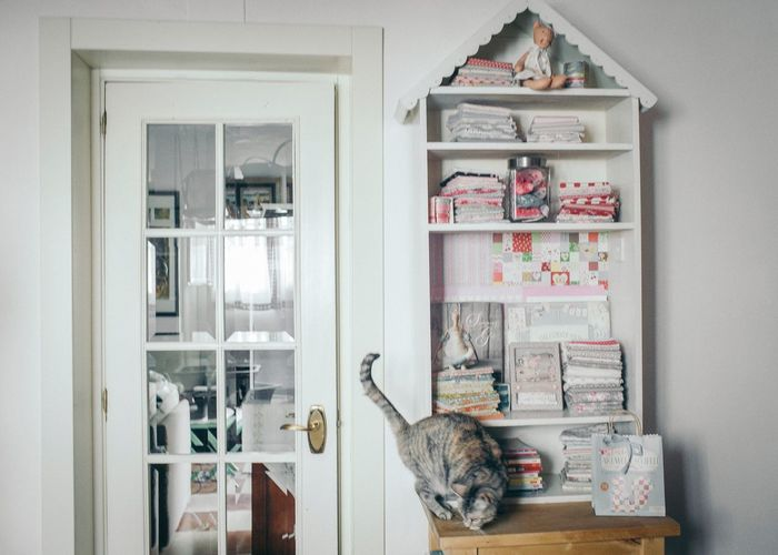 Cat No People Day Domestic Room Domestic Kitchen Rope Indoors  Cabinet